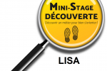 Mini-Stage au LISA